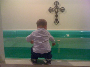 Beanster seriously contemplating swimming in the baptistry!